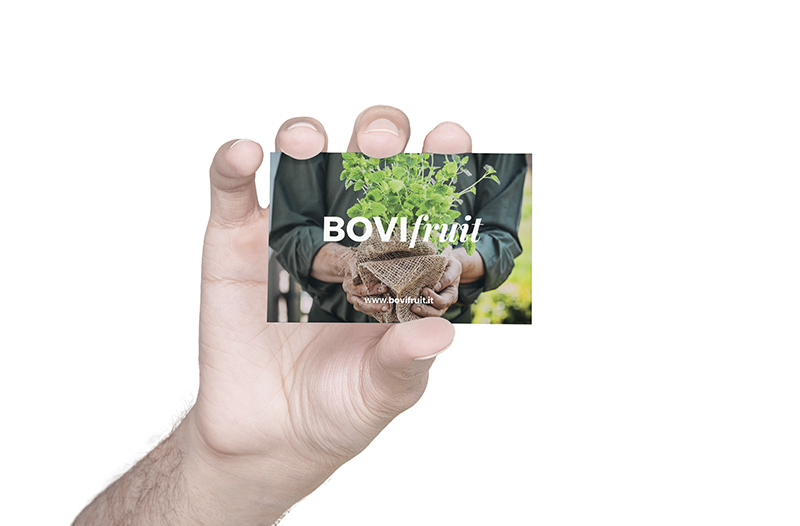 Kaleidoscope Digital Agency - Bovi Fruit - Business Card